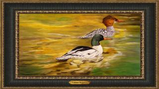 Common Mergansers Giclee