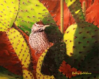 Deset Cactus Wren Greeting Card