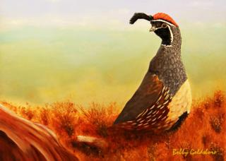 Gambel's Quail Greeting Card