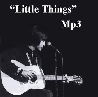 Little Things Download