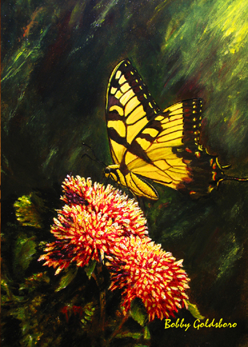 A Butterfly for Bucky Greeting Card