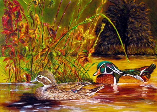 Autumn Wood Ducks Greeting Cards