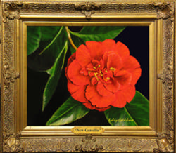 New Camellia*SOLD
