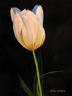 White Tulip*SOLD